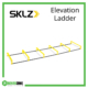 SKLZ Elevation Ladder Frame Rehabzone Singapore